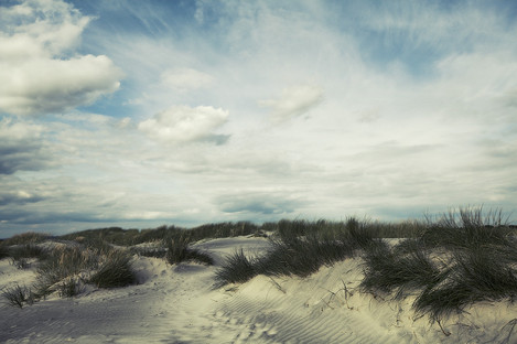 David Baker, Dunescape West Wittering.