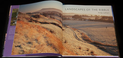 Landscapes of the Ribble - Andy Latham