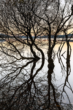 David Langan - Loch Rannoch Reflection