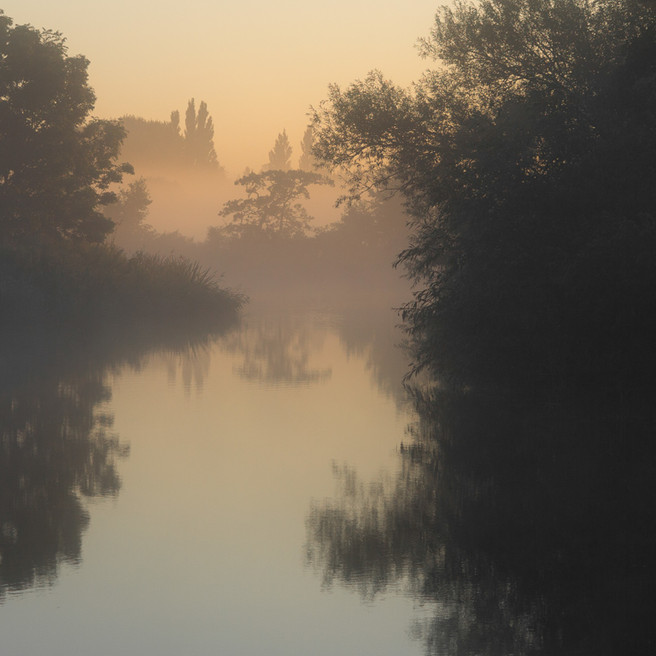 Thames Waters 100 miles downstream (dawn near Shiplake).