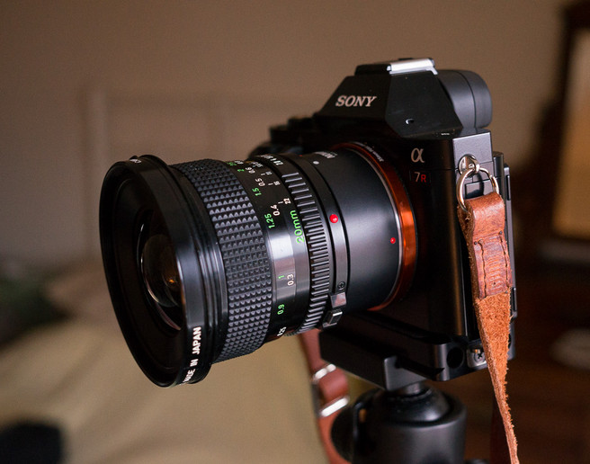 Canon FD 20mm F2.8 on a Novoflex adapter