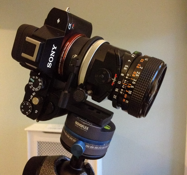 Canon 35mm TS on a Novoflex Adapter