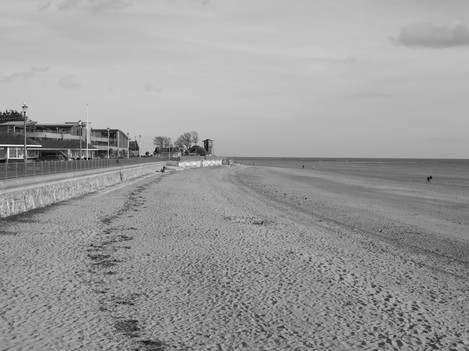 Black and white beach shot