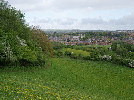 View with housing estate