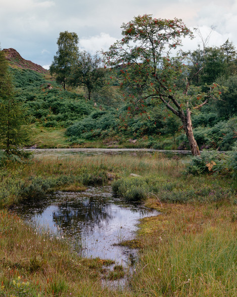 Postcards-From-Holme-Fell-4
