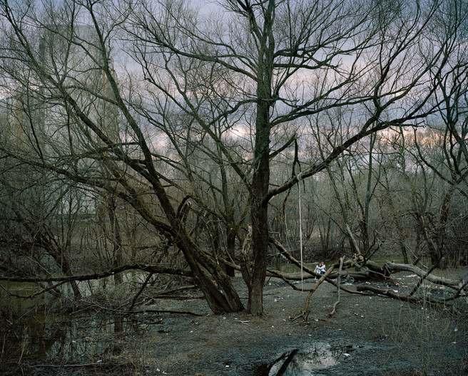 Image 11. Caption: Instead of pastel shades and sylvain glades we see litter in the woodland grove. Alexander Gronsky Pastoral 2008 - 2012