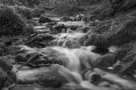 'River Dove Flow' - by Dave Mead