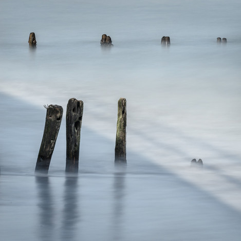 Singing Groynes at Sandsend' - by Lizzie Shepherd