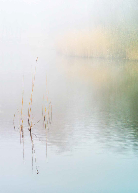 Misty Morning at Wake Valley Pond