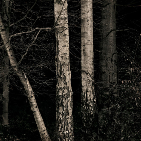 ghosts_016