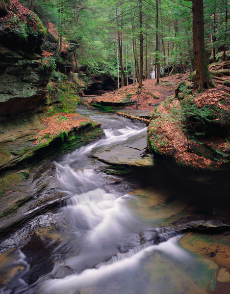 Springtime Stream, Hocking Hills State Park, Ohio