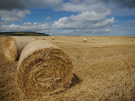 Hay Bales - possible mood shot