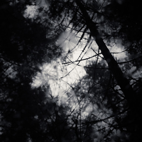 New Darkness, from Ephemeral Pools