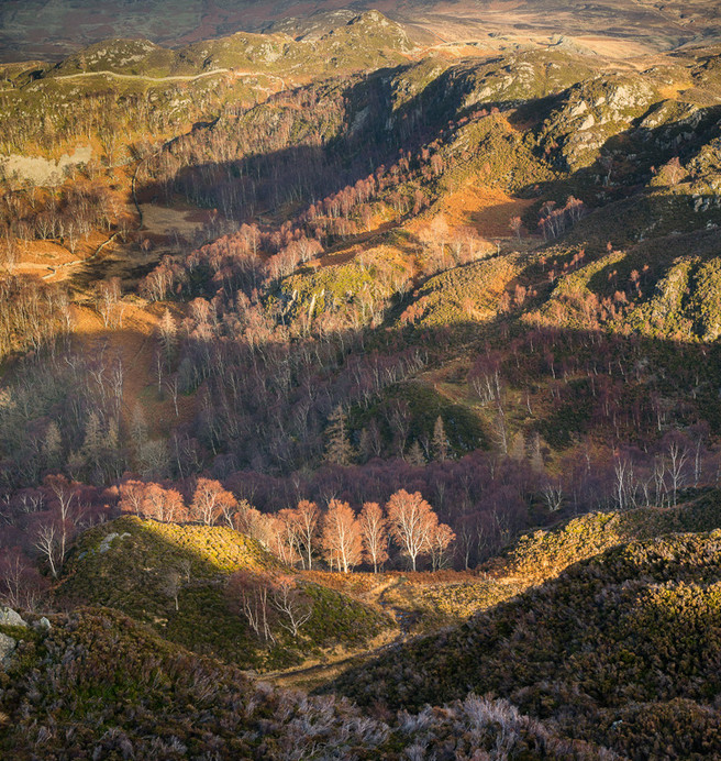 From King's How, Borrowdale, Joe Cornish website