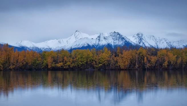 Mostly birch trees across the lake, Bradley Lake, Wasilla, Alaska, Ian Meades, website