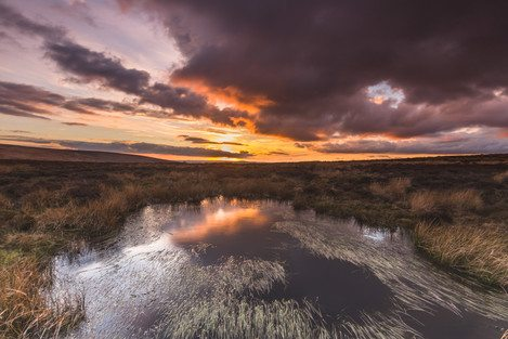 long-mynd-wildmoor-above-pools-dusk-feb-33