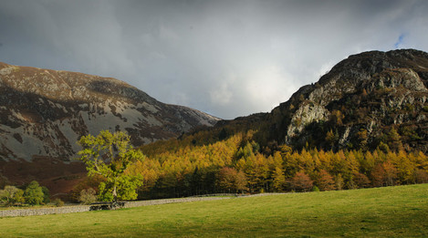 autumn-colours-by-crummock-water