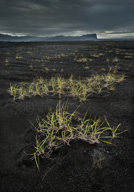 Flood Plains, South Iceland.