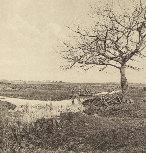 Peter Henry Emerson - Leafless in March 1887
