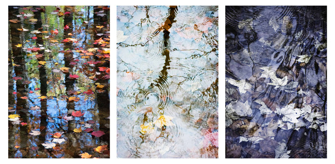 Triptych of Water Dance, I'll Cry if I Want To, Barely There